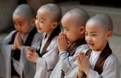 Child Monks?