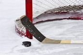The basics needed in hockey: a stick, a puck, a net and of course ice.