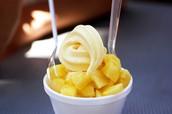 Frozen Yogurt Cooking Classes