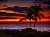 I want to go to Hawaii