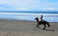 HORSE BACK RIDE ON THE BEACH