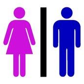 Gender Breakdown