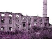 Ruinas de laFabrica