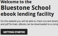Bluestone eBook Homepage