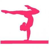 Monticello Gymnast Win State!