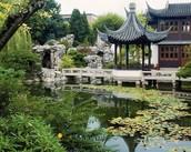 Lan Su Chinease Garden