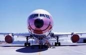Compra un vuelo de AeroDiana hoy!