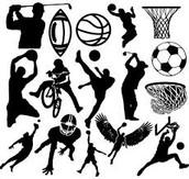 I Like All Sports