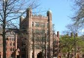 Training School & College