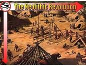 Join the Neolithic Revolution