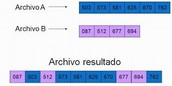 Algoritmo de almacenamiento