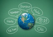 Learn a language in the comfort of your home at your convenience with a professional personal tutor.
