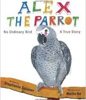 Alex the Parrot by Stephanie Spinner