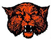 Wink Wildcats Logo