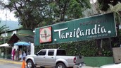 Tarzilandia (restaurant)