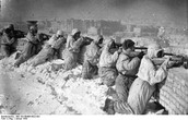 The Fight for Stalingrad