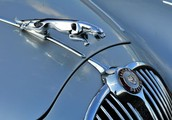 Import Auto Repair St Petersburg Professional Services