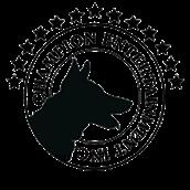 Champion Film Company's Logo
