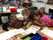 Fossil Fun in Second Grade