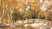 El Parque Sarmiento!