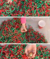 Find the Hidden Jingle Bells