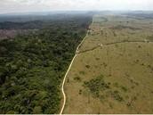 El Amazonas convertido en sabana
