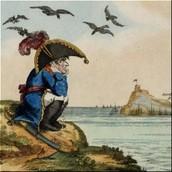 Sad napoleon