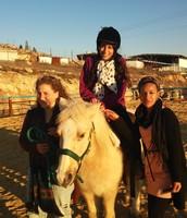 פעילות בחוות סוסים