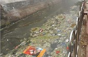 trashy, polluted water