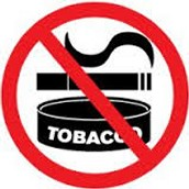 Stay On Chewable Tobacco Ban To Continue: Delhi High Court