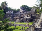 The Mayans lived in a rain forest