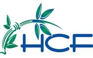 Healing Consciousness Foundation