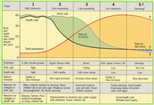Demographic Transition Model of France