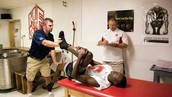 What do sports medicine doctors do?