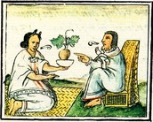 Aztecs contributed medicine