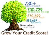 How could you start building a credit score?