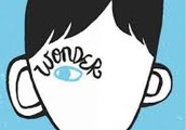 The most recent book that I enjoyed is Wonder
