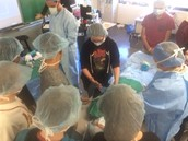 Surgery at the Career Fair!