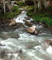Río Guarapiche