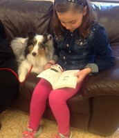 PAWS Readers
