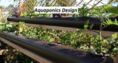 Finding The Facts On Down-To-Earth Secrets In Aquaponics Design