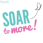 SOAR TO MORE