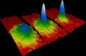 Bose Einstein Condensate