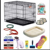 Getting the Right Things for your Puppy