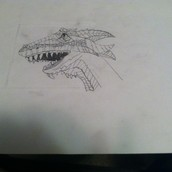 A picture of A well drawn Dragon