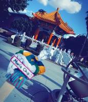 Chinese Pavillion: