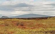 Skjoldvulkan på Island