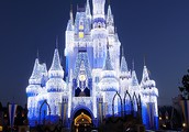 Disney world is located in Florida.