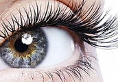 Join us in Atlanta or Miami to Get Certified in Lash Extensions, Brows, and Makeup!
