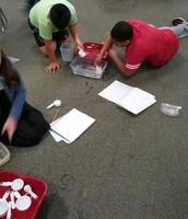 Exploring Math in 4th Grade!
